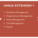 Umoja Foundation1 + Extention + Integration