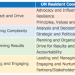 UN Resident Coordinator Competency