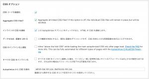 Autoptimize CSS